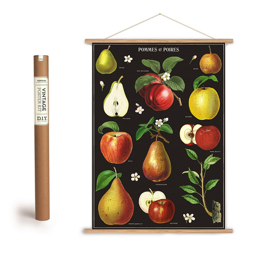 APPLES & PEARS ART POSTER AND HANGING KIT