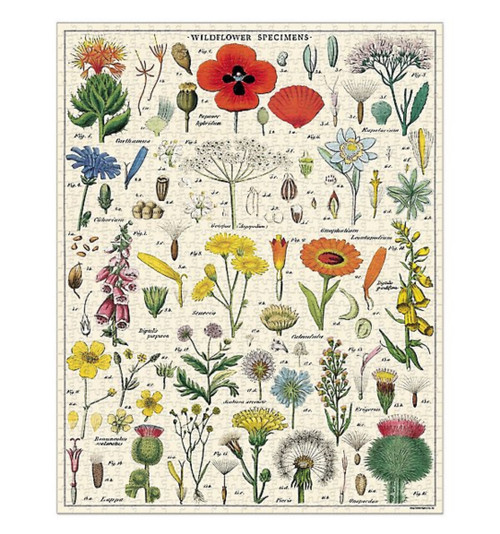 1000 Piece Wildflowers Jigsaw Puzzle - A