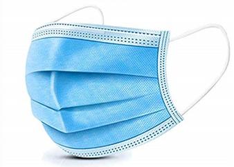 Surgical Earloop Masks (10 Pack)