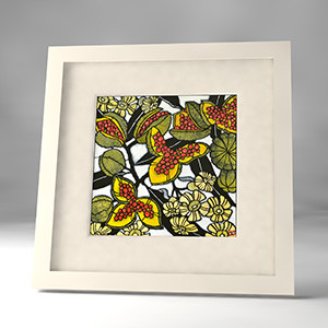 pittosporum framed print