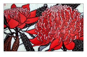 red waratah III  large archival print