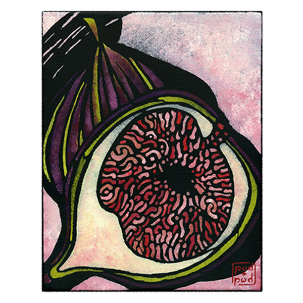 fig archival print