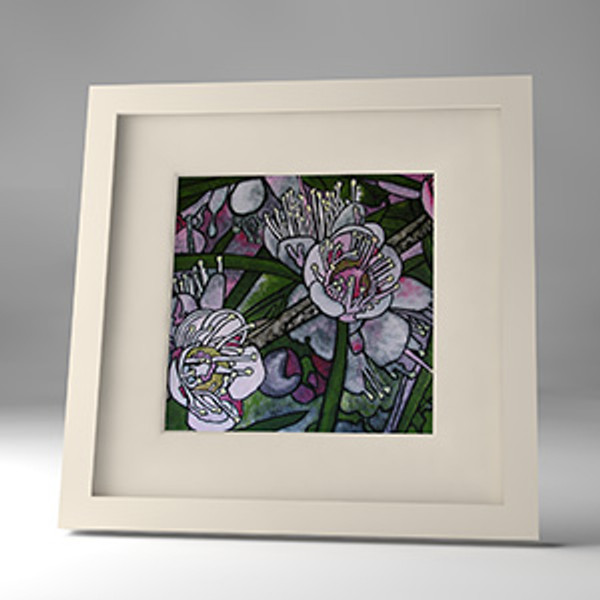 white myrtle framed print