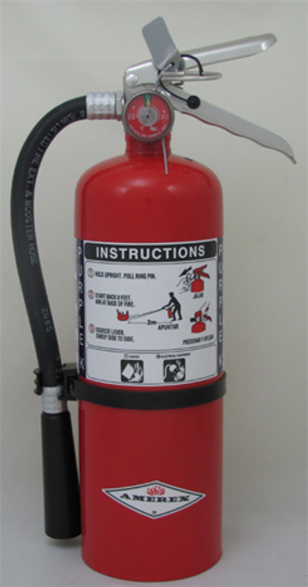 Amerex B479T - 5 lb Purple K Fire Extinguisher