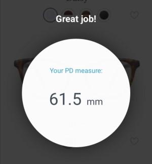 pd-measurement-results-300w.jpg