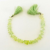 78 Count Varied Size Prehnite Faceted Top Drill Briolettes (Sale)