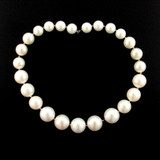 20 Count Graduated White Faux Pearl Rounds (Sale)