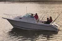 Euro Style Walk-Around Cuddy Cabin Boats