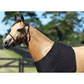 Showmaster Quilted Rug Bib