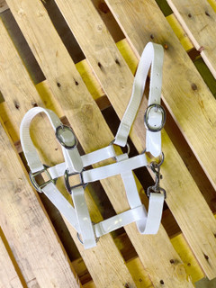 PVC Halter - White with Brass Buckles