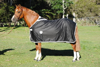 Gala Equine Show Rug Black Cotton with White
