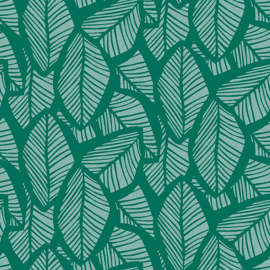 Scylla - Don't Stop Be-Leafing/Seattle Sunshine