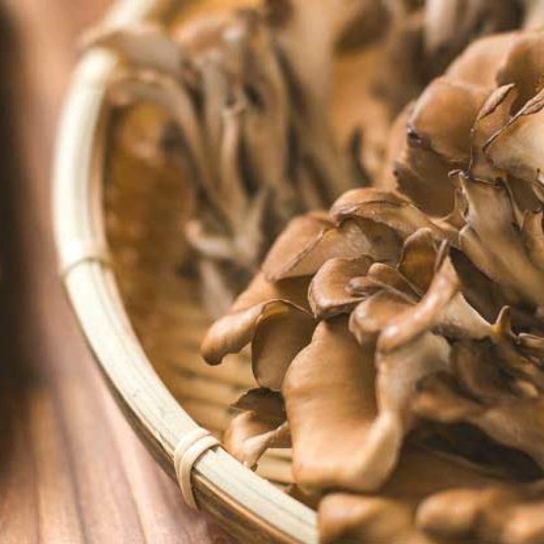 organic mushroom powder