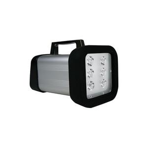Nidec. High Intensity LED Portable Stroboscope with Rechargeable Battery, NEMA 4X (IP65), 6 LED's DT-365E