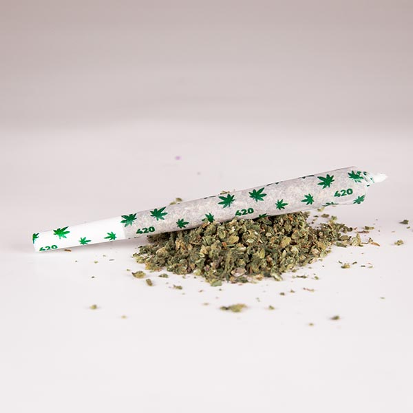 A filled 420 printed pre-rolled cone on a pile of cannabis