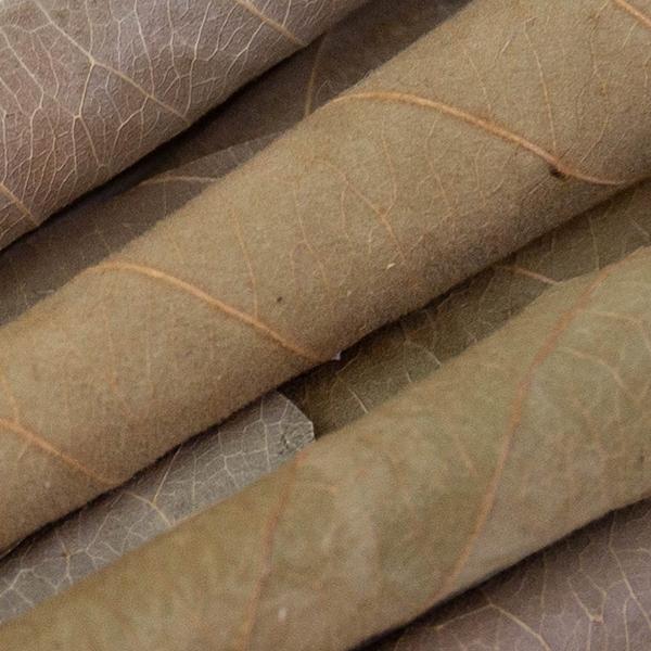 palm leaf blunt tubes