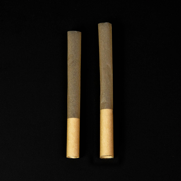 rolling paper pre rolled tubes