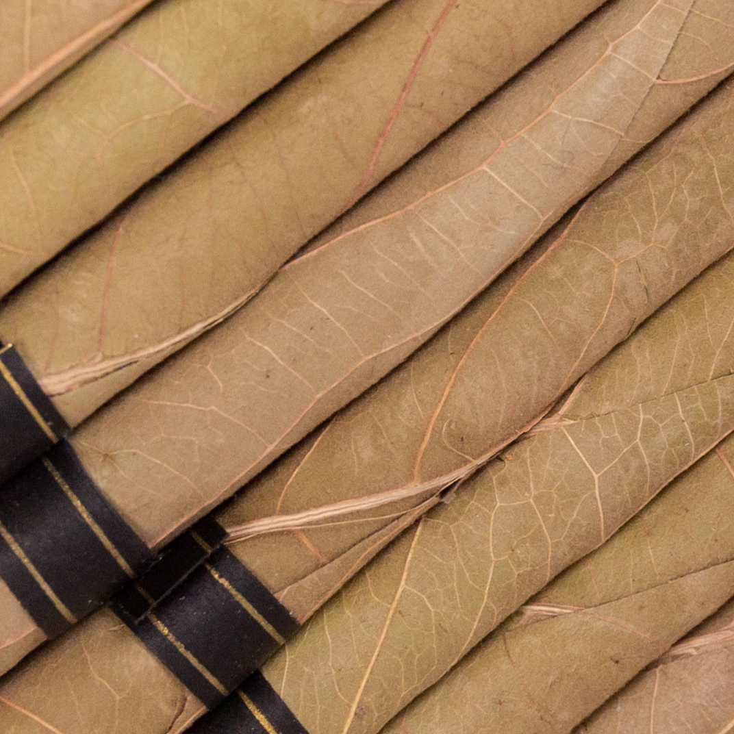 a close-up of the tendu leaf blunts