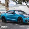 Roof Wrap - Gloss Black / Satin Black / Carbon Fiber | 2015-2020 Ford Mustang GT