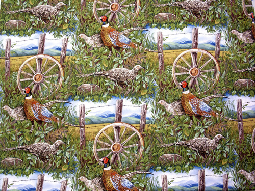 PHEASANTS IN THE FENCE ROW - EXTREMELY COLORFUL - BTR6206-GREEN - 1