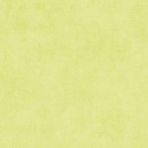 SHADES VINTAGE GREEN FABRIC - C200-41 Vintage Green