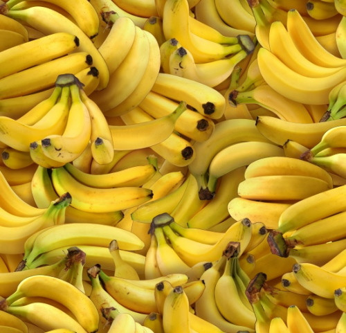 Tossed Bananas - 461Yellow