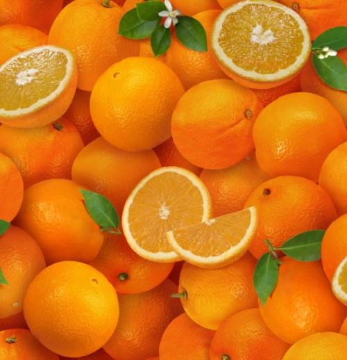 Tossed Oranges - 261Orange