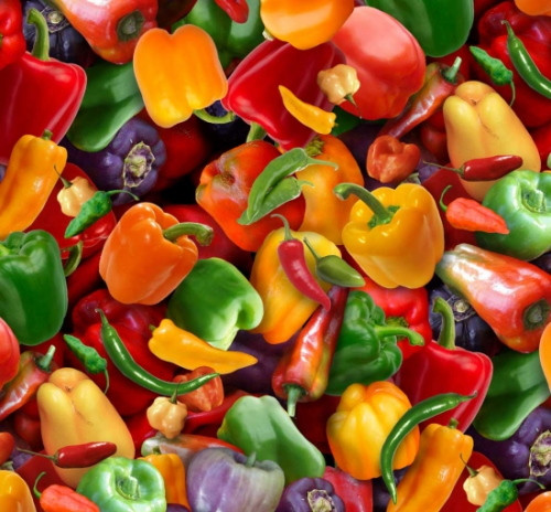 Tossed Assorted Multi-Color Peppers - 389Multi