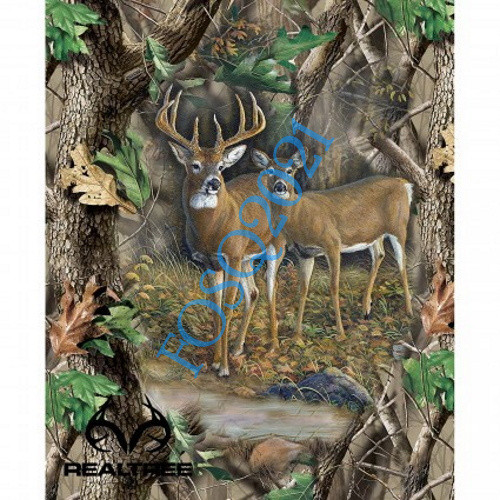 Buck and Doe in the Woods Panel - 9903