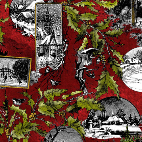 RED, GREEN, BLACK, WHITE WINTER COLLAGE