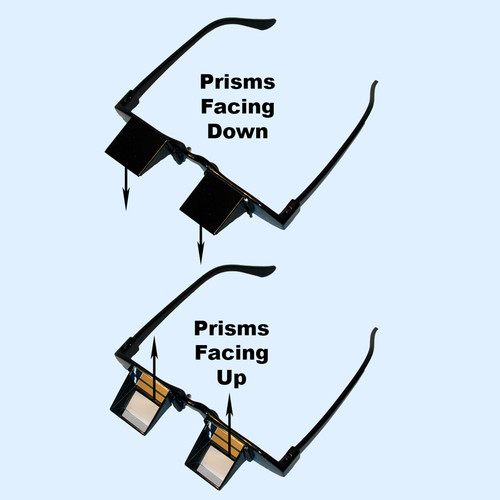 Views Downward or Upward Based on Position of Prisms