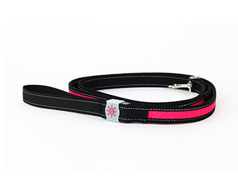 Night Scout Dog Leash