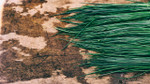 Herb Chive Seeds QTY. 50