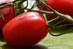 Roma Tomato Seeds QTY. 25 (Determinate)