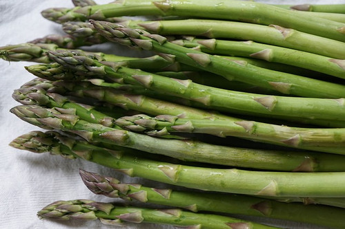Mary Washington Asparagus
