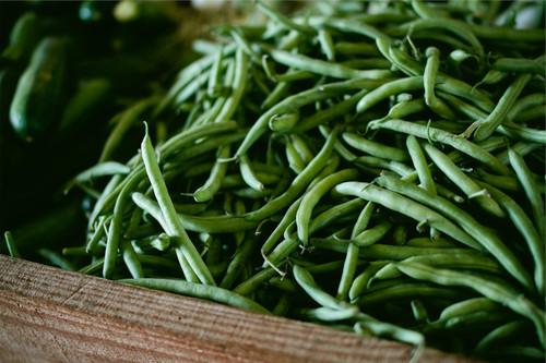 Blue Lake 274 Bush Bean Seeds QTY. 50