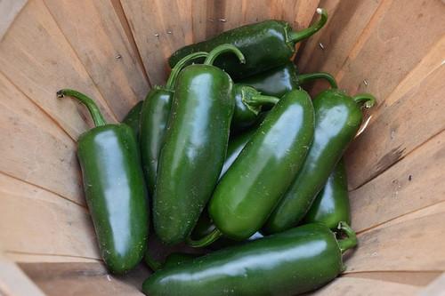 Jalapeno M Pepper
