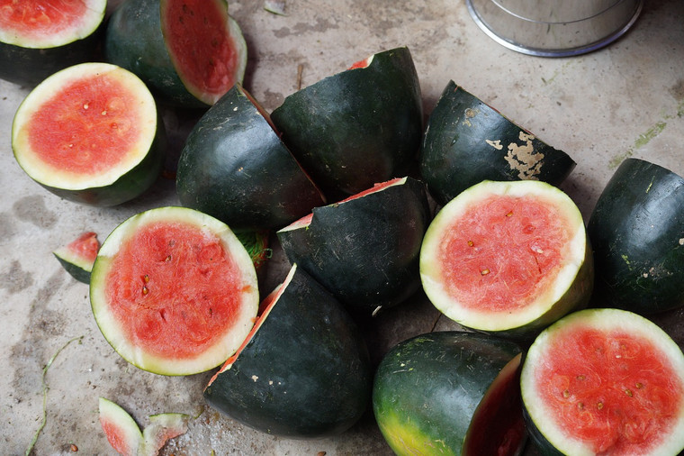 Watermelon Sugar Baby Seeds QTY. 30
