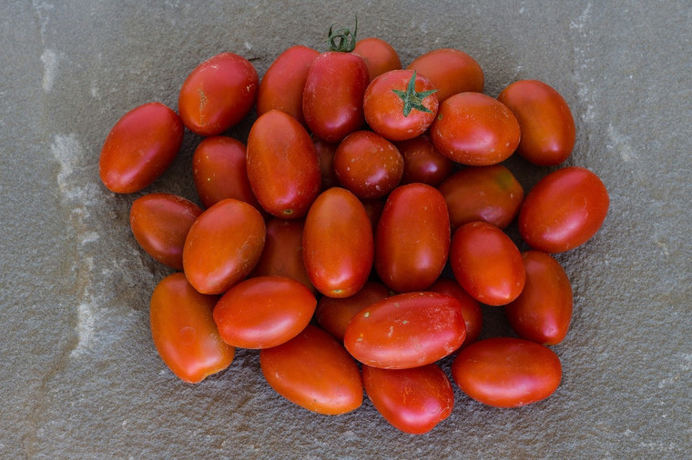 Amish Paste Tomato Seeds QTY. 25 (Indeterminate)