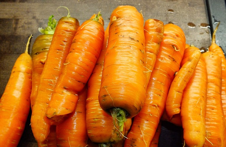Chantenay Red Cored Carrot Seeds QTY. 255