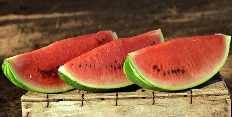 Watermelon Jubilee Seeds QTY. 30