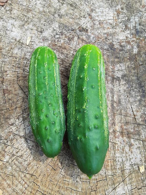 National Pickling