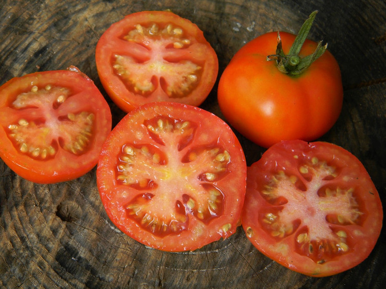 Stupice Tomato Seeds QTY. 25 (Indeterminate)