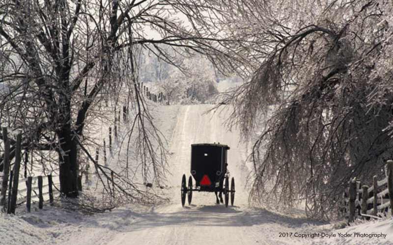 Amish Basics Old Order Amish Amish Country Insider