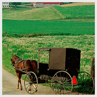 About Amish Orders | Ohio's Amish Country Visitor's Guide