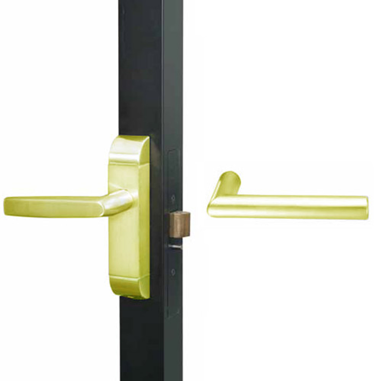 4600M-MI-651-US3 Adams Rite MI Designer Deadlatch handle in Bright Brass Finish