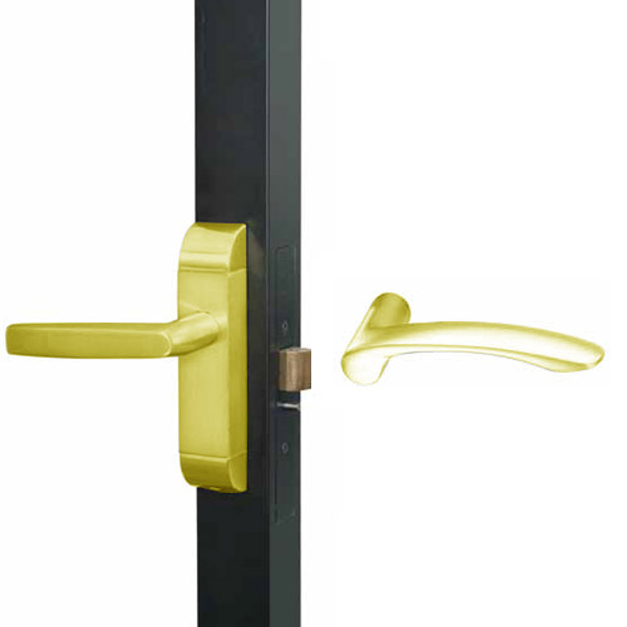 4600M-MV-531-US3 Adams Rite MV Designer Deadlatch handle in Bright Brass Finish