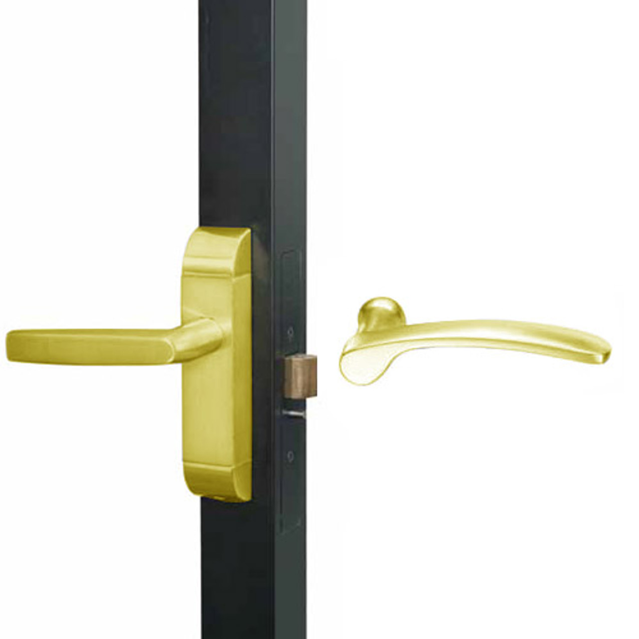 4600-MN-511-US3 Adams Rite MN Designer Deadlatch handle in Bright Brass Finish