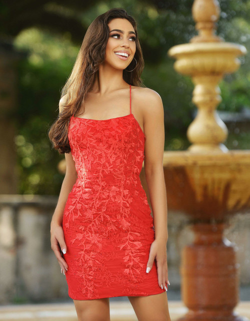 Dutchess Mini Dress, Red, Velvi, Lady Black Tie