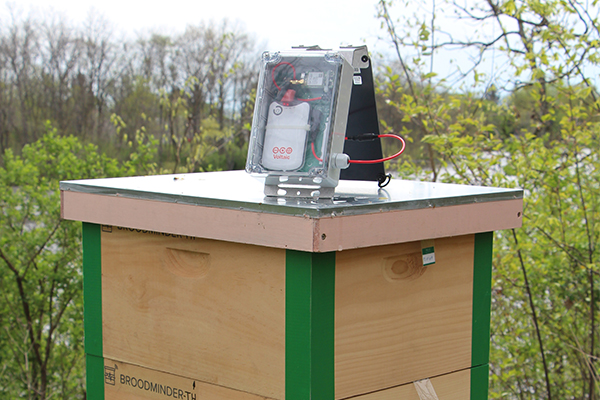 Solar for Environmental Monitoring